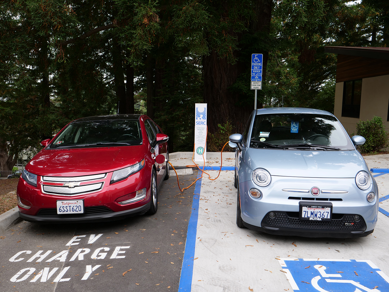 Two cars, with the fuel lines crossing over each other, charge beneath redwoods