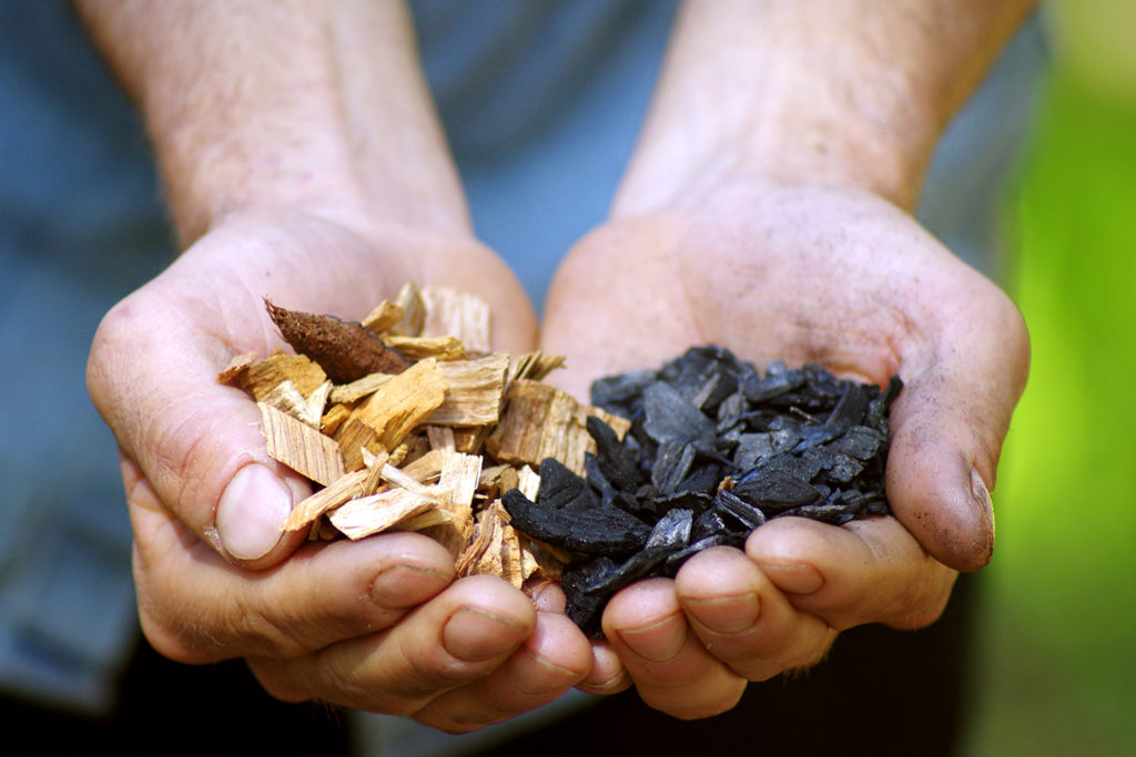 Two cupped hands hold wood chips before and after biochar processing