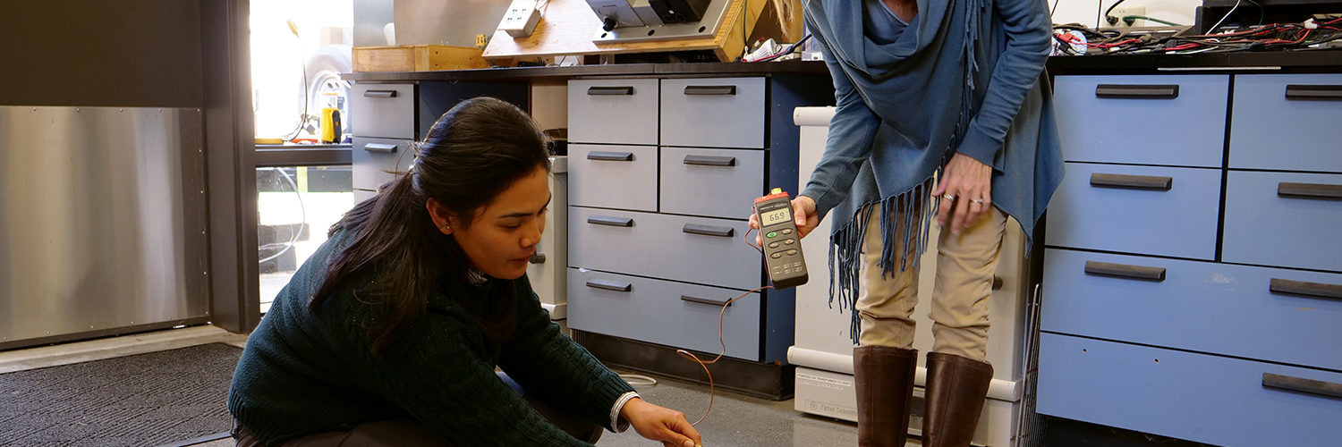 A student prepares to insert a probe into a woodchip pile, while a visitor holds the temperature gauge.
