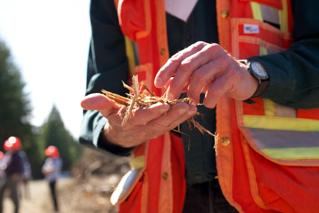 A person in an orange vest holds a handful of logging remains