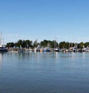 Ships are moored in the marina