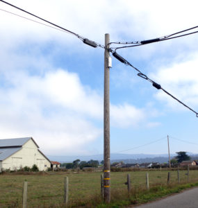 A utility pole in the foreground, with a barn in the background